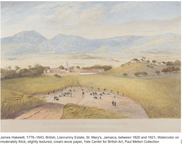 Painting of Jamaica Plantation