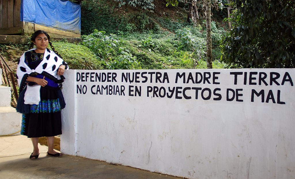 "A picture of Guadalupe Vázquez Luna with a sign that says in English, ""Defend our mother earth. Do not change into bad projects."""