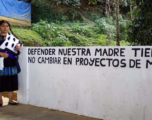 """A picture of Guadalupe Vázquez Luna with a sign that says in English, """"Defend our mother earth. Do not convert it into bad projects."""""""